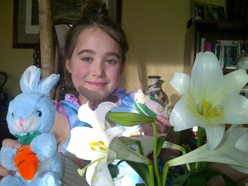 Lancaster - Easter lily